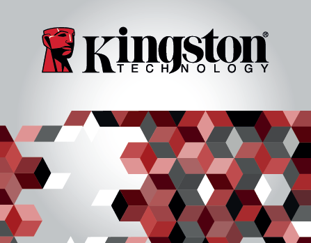 Kingston Technology - Encrypted & Secured USB Drives