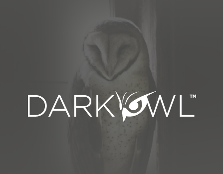 DarkOwl - DarkNet Big Data
